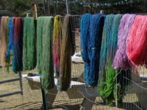 Dyed yarns dry in the sun