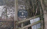 Trealy Farm
