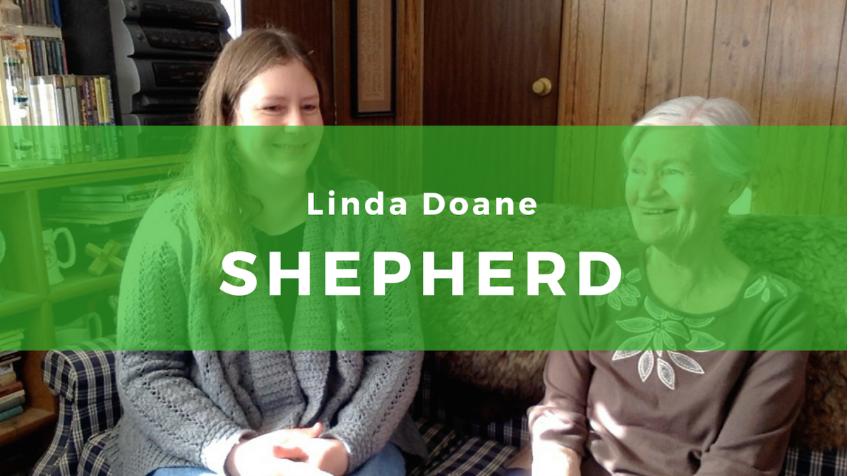 13: Linda Doane, Shepherd of Shetlands