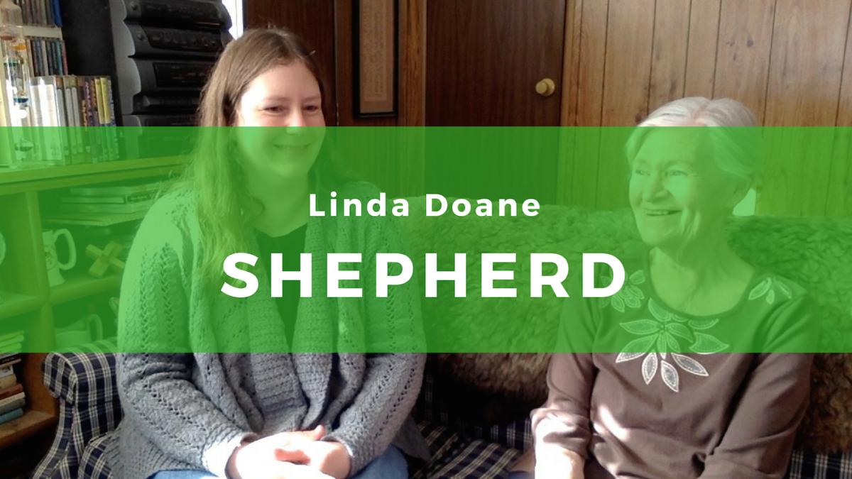 13: Linda Doane, Shepherd of Shetlands