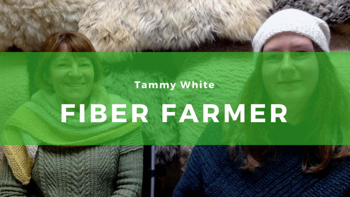 3: Tammy White, Fiber Farmer at Wing & A Prayer Farm