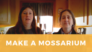 Screenshot of Sarah and Jessamyn from vido on making a mossarium