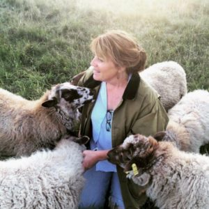 Tammy with sheep