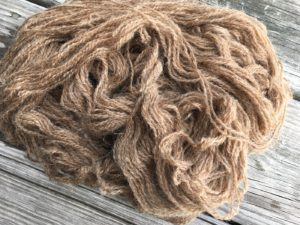 Butternut dyed Yarn