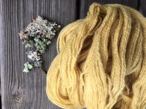 Finished lichen-dyed yarn