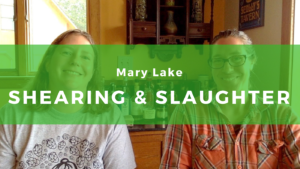 Mary Lake Interview