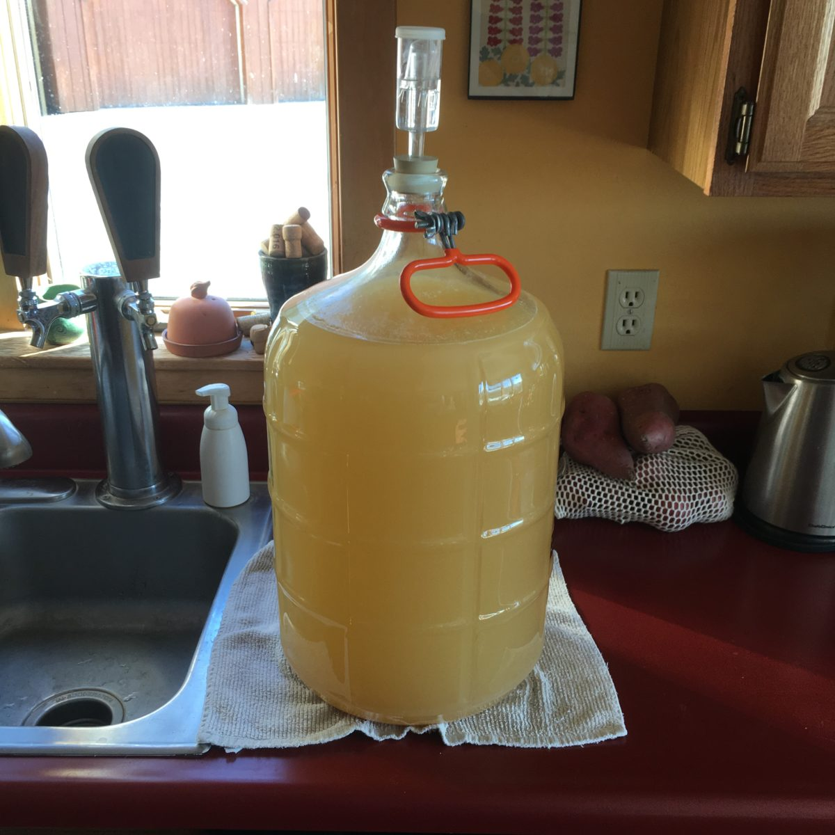 Mead & Melomel: variation on a honey brew