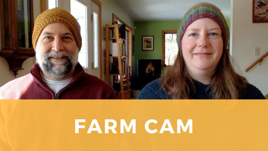 A man and woman discuss their farm webcam project.
