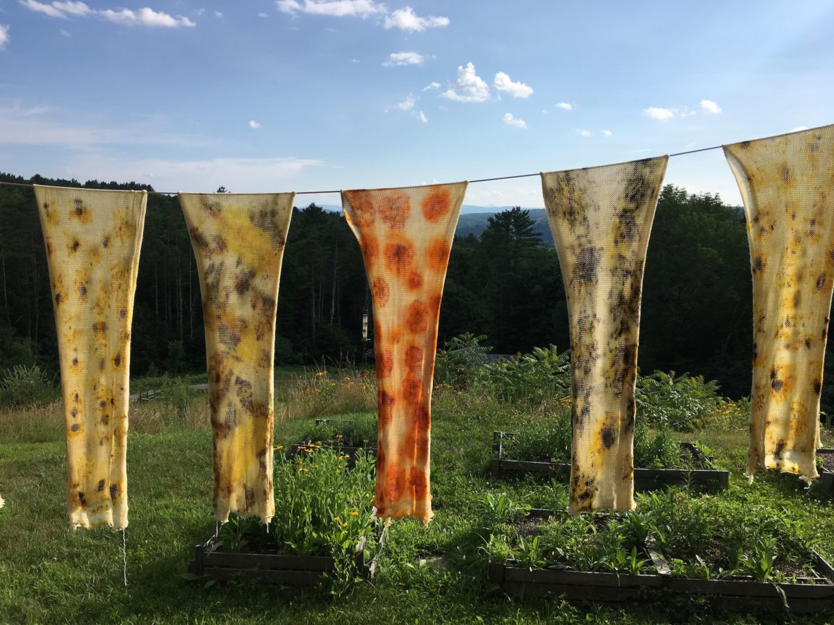 Eco-printing on sock blanks: direct dyeing with plant parts